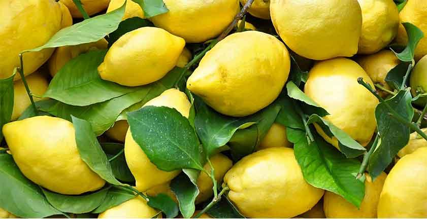 Il limone sfusato amalfitano e la pasta di J-MOMO