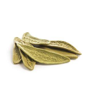 épinards feuilles d'olivier