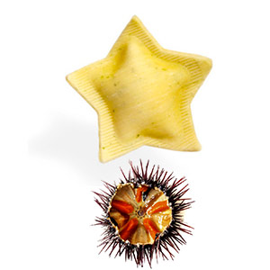 Capri's stars with sea urchin and rocket