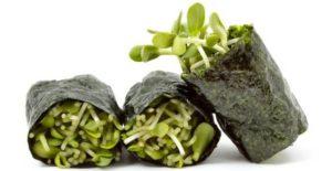 alghe giapponesi