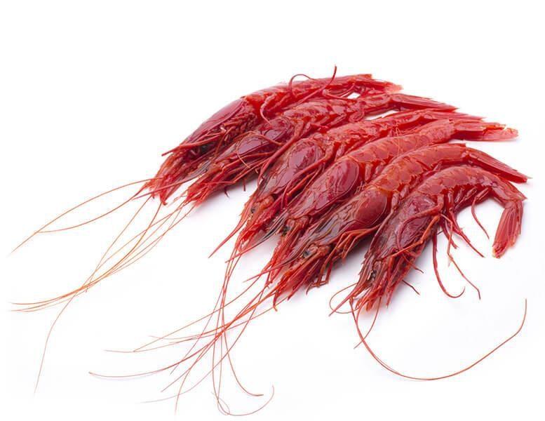 gambero rosso in panure di pistacchio